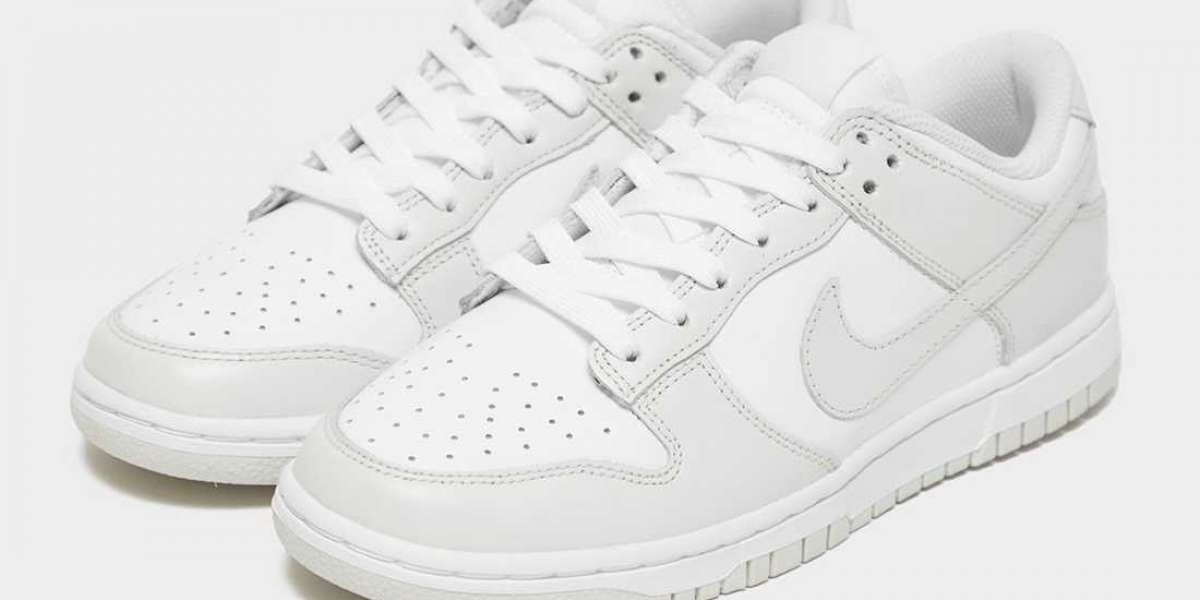 "Do you like this Nike Dunk Low WMNS ""Photon Dust"" DD1503-103 style shoes?"
